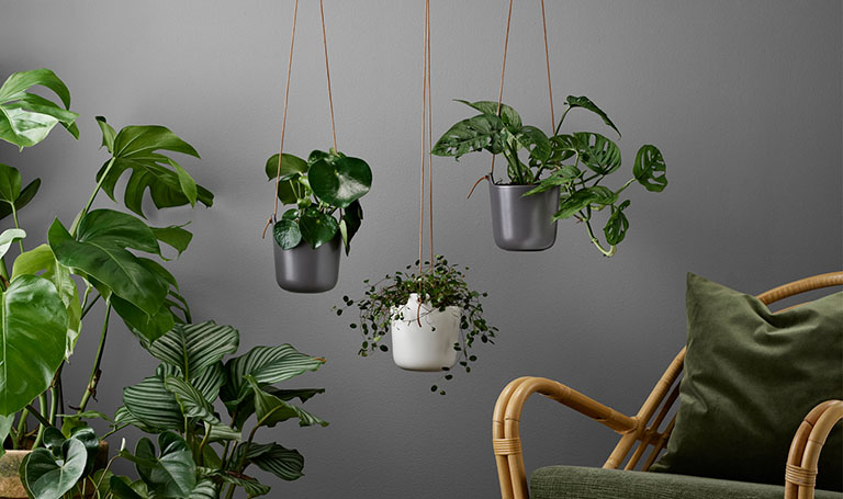 <p>With the Eva Solo self-watering pots, you no longer need to worry whether your plants get too little or too much water.</p>