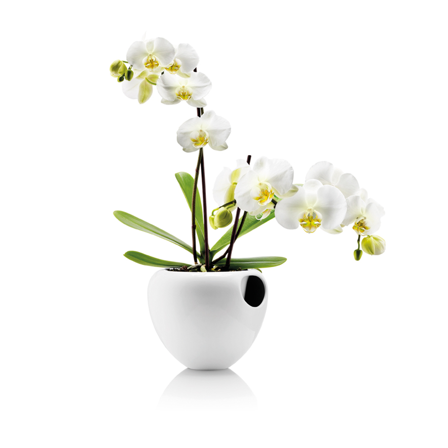 Self Watering Pots Find A Great Selection Online At Eva Solo